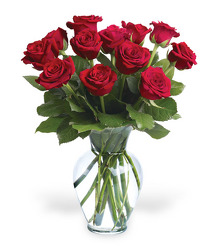 <b>Scott's Dozen Medium Stem Roses</b>