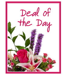 Deal of the Day  from Scott's House of Flowers in Lawton, OK