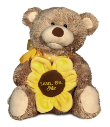 Lean on Me Bear from Scott's House of Flowers in Lawton, OK