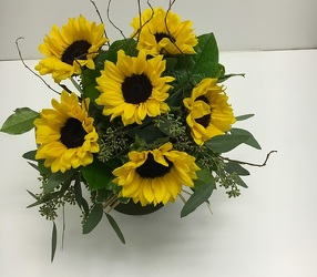 <b>Burst of Sunflowers</b>