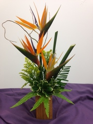 <b>Simply Tropical</b> from Scott's House of Flowers in Lawton, OK