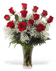 <b>Red Premium Long Stem Roses</b>