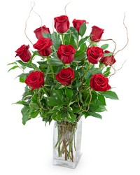 Dozen Red Roses with Willow from Scott's House of Flowers in Lawton, OK