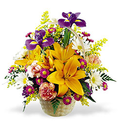 <b>Natural Wonders Basket</b> from Scott's House of Flowers in Lawton, OK