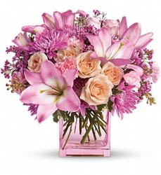 <b>Love In Pink</b> from Scott's House of Flowers in Lawton, OK