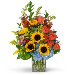Summertime Fun from Scott's House of Flowers in Lawton, OK