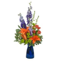 Cheer the Blues from Scott's House of Flowers in Lawton, OK