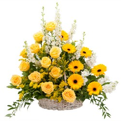 Ray of Sunshine Basket Tribute from Scott's House of Flowers in Lawton, OK