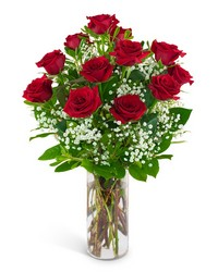 Dozen Red Roses and a Million Stars from Scott's House of Flowers in Lawton, OK