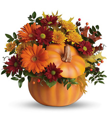 <b>Teleflora Country Pumpkin</b> from Scott's House of Flowers in Lawton, OK