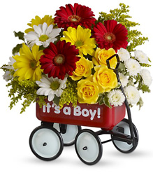 Baby's Wow Wagon by Teleflora from Scott's House of Flowers in Lawton, OK