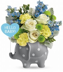 <b>Hello Sweet Baby - Blue</b> from Scott's House of Flowers in Lawton, OK
