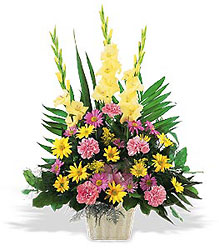 <b>Warm Thoughts Arrangement</b> from Scott's House of Flowers in Lawton, OK
