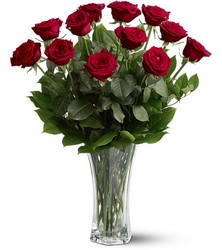 <b>Red Premium Long Stem Roses</b> from Scott's House of Flowers in Lawton, OK