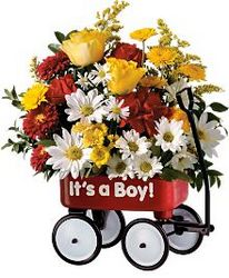 <b>Baby's First Wagon</b> from Scott's House of Flowers in Lawton, OK