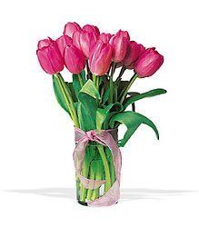 <b>Tulips in Glass</b> from Scott's House of Flowers in Lawton, OK