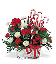 <b>Candy Cane Bouquet</b>
